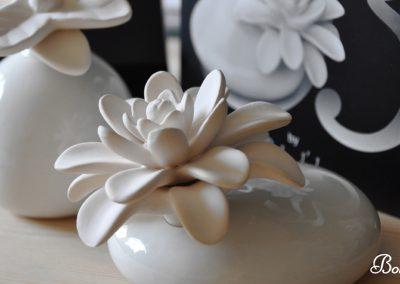 Flor-de-Mikado
